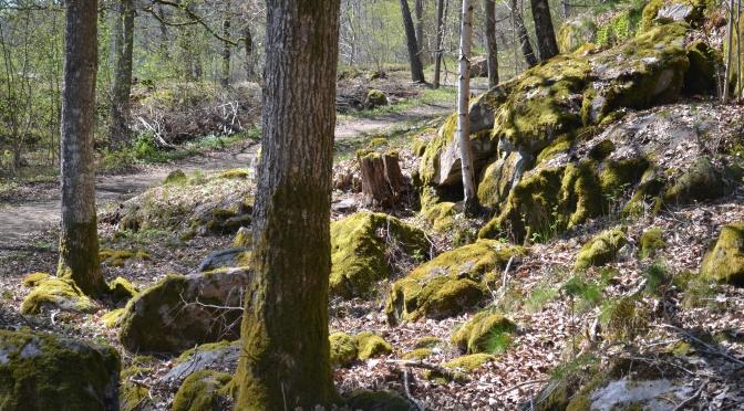Kråkebo naturreservat